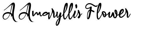 A Amaryllis Flower フォント