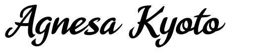 Agnesa Kyoto font