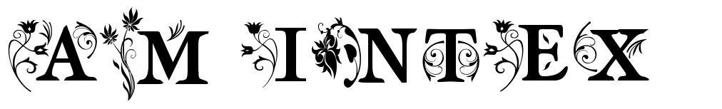 AM Intex font