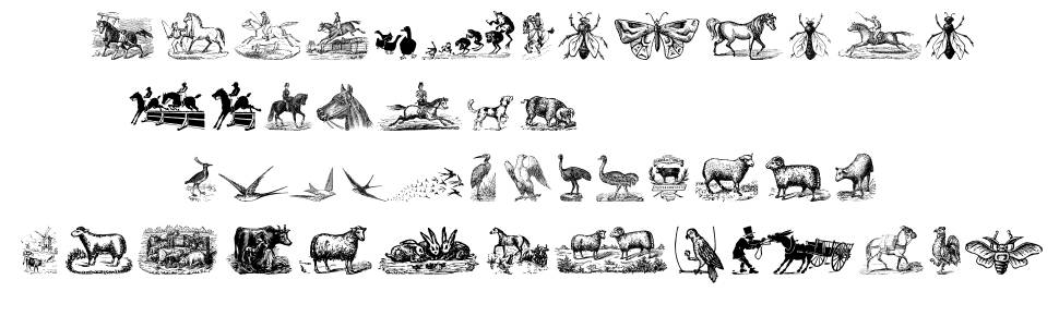 Animals Old Cuts Two font