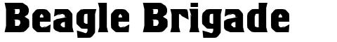 Beagle Brigade