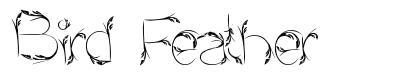 Bird Feather font