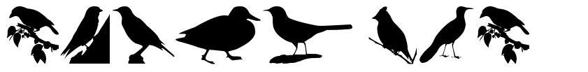 Birds TFB