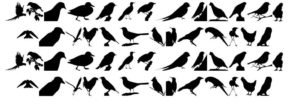 Birds TFB font