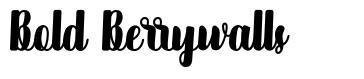 Bold Berrywalls font