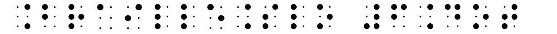 BrailleSlo 6Dot