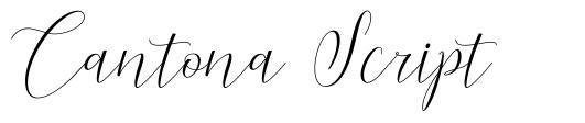 Cantona Script
