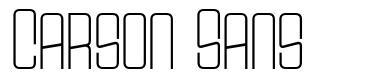 Carson Sans font