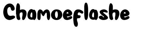 Chamoeflashe font