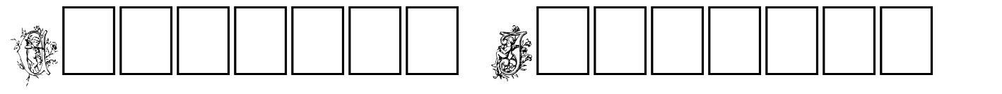 Cherubim Initials fonte
