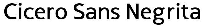 Cicero Sans Negrita font
