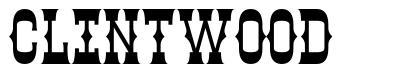 Clintwood font