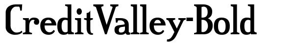 CreditValley-Bold font