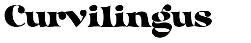 Curvilingus font