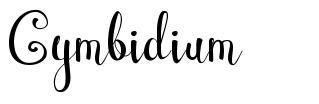 Cymbidium 字形