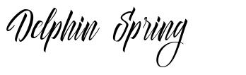 Delphin Spring font