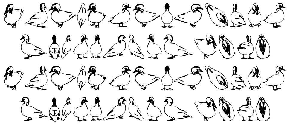 Duck font