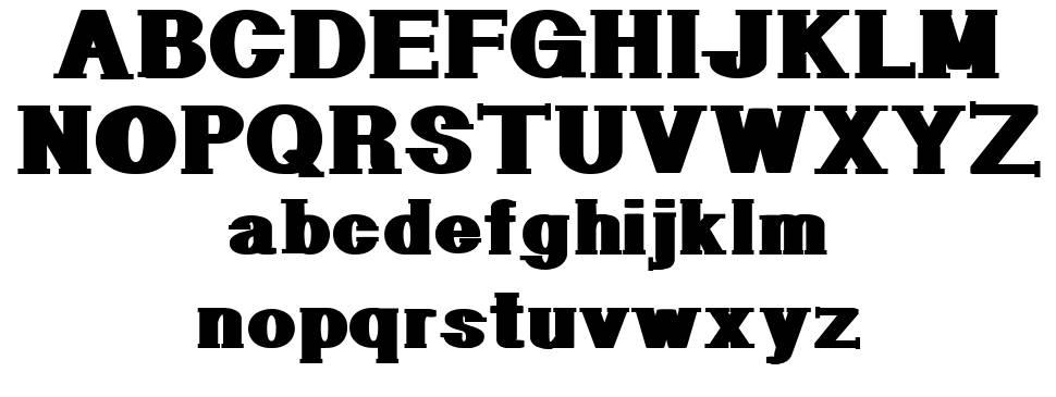 Geometric Serif PW police