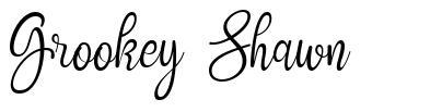 Grookey Shawn schriftart