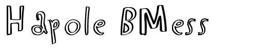 Hapole BMess