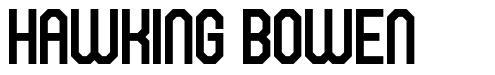 Hawking Bowen шрифт