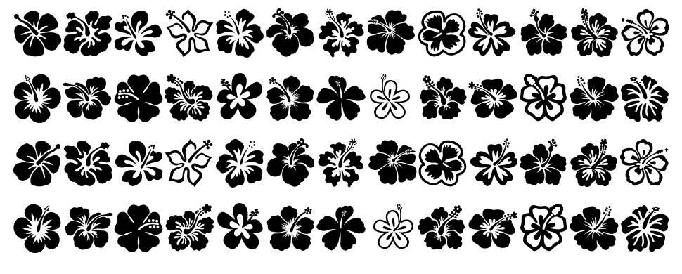 Hibiscus font