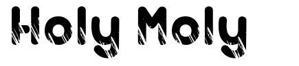 Holy Moly font