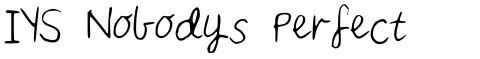 IYS Nobodys Perfect