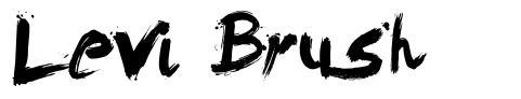 Levi Brush font