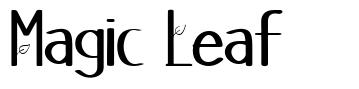 Magic Leaf フォント
