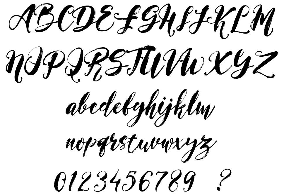 Magical Stylish Script шрифт