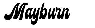 Mayburn police