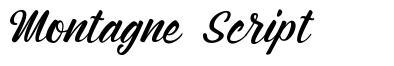 Montagne Script шрифт