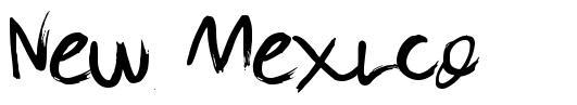 New Mexico font