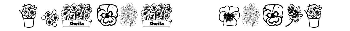 Pansies 4 Sheila