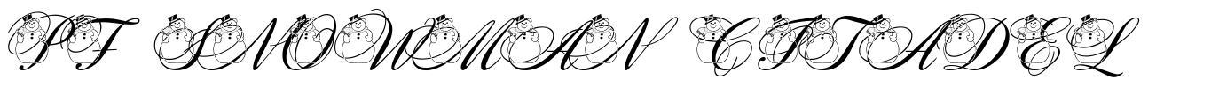PF Snowman Citadel 字形