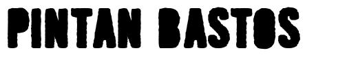 Pintan Bastos font