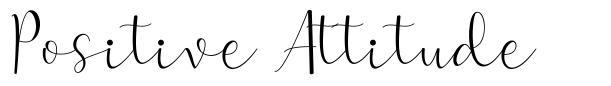Positive Attitude písmo