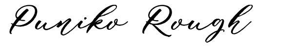 Puniko Rough font