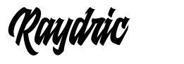 Raydric