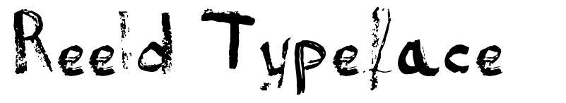 Reeld Typeface font