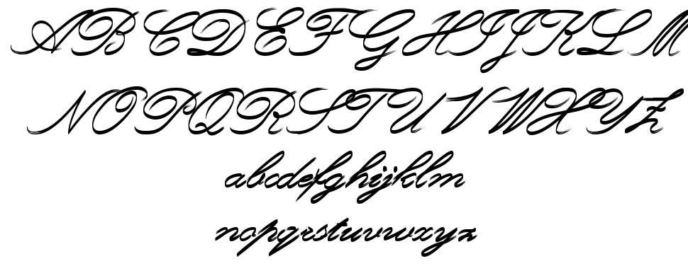 Rough Brush Script font