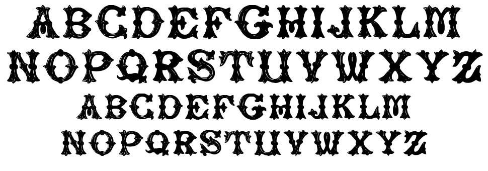 Rough Tuscan font