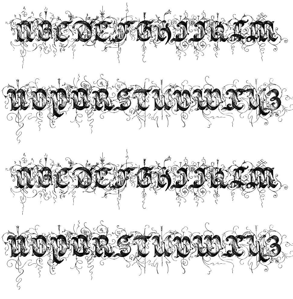 Saraband 字形