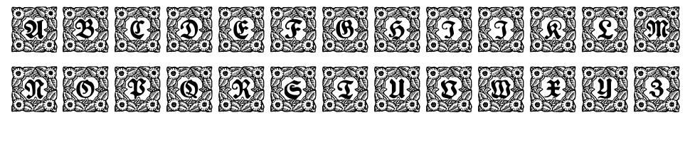 Schmuck-Initialen fonte