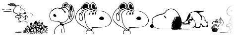 Snoopy Dings