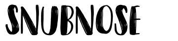Snubnose font