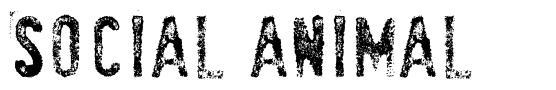 SociaL AnimaL font