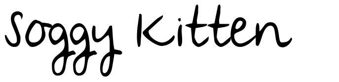 Soggy Kitten