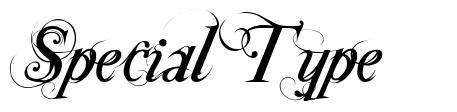 Special Type font